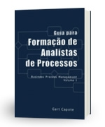 Novo Guia para Analistas de Processos
